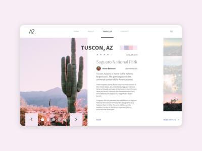Desert Article Design