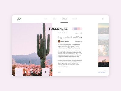 Desert Article Design adobe xd ux design publication desktop ui design article design