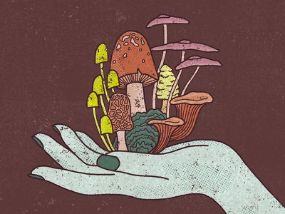Growth hand mushroom hand drawn handdrawn texture illustration