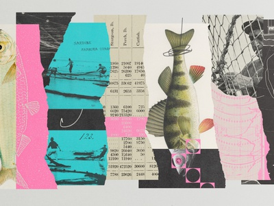 274 collage illustration