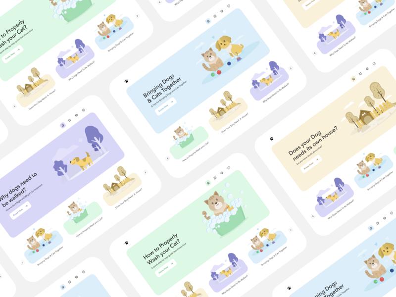 Pettty animal dog cat pets webdesign ui uidesign layout illustration minimal simple