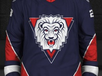 Redesign SHL – Linkoping HC