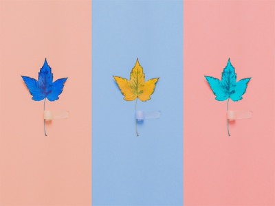 Fall Triptych triptych leaves colors pattern fall pink concept craft design illustration art-direction photo