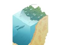 'GeoBlock' - Visiting Whales