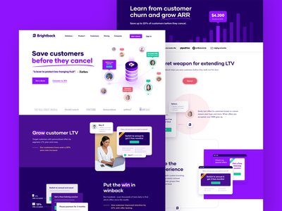 Brightback - Homepage, Saas page marketing ui product homepage webpage saas website webdesign