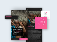 NGO - Widgets, Raised capital