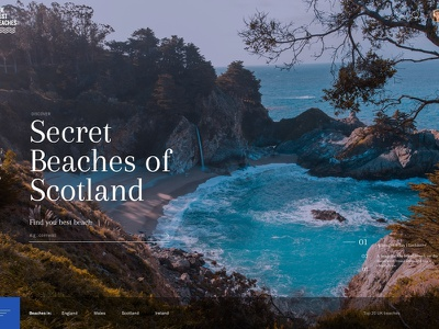 Best Beaches concept for Travel Chapter branding web ui ux typography