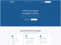 Website blue1