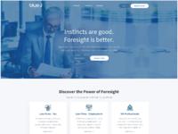 Website blue2