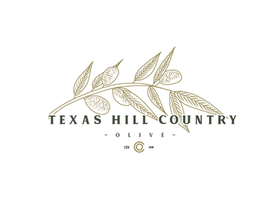 Logo Design Concept for Texas Hill Country Olive craft handdrawn hand drawn handcrafted old american logo retro typeface font type vintage