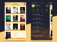 Reader App Drawer & Shelf UI