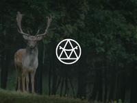 Logo for Wild Fashion