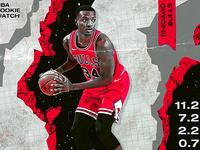NBA Rookie: Wendell Carter Jr.