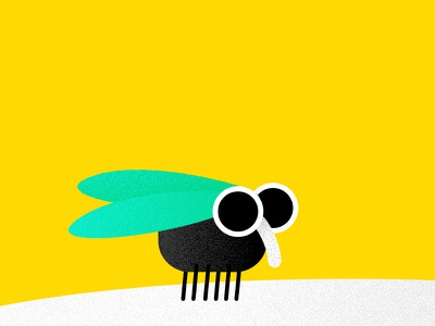 Homage to a Fly grain minimal character flat illustration insect fly housefly
