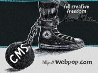MAD '11 Webpop Tarp