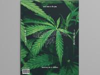 Washington Pot Issue 01
