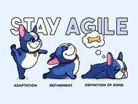 Agile Pup