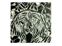 Bengal Tiger/ 'Bagh Kali'