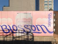 SAKURA ADCEPT mockup billboard sakura japanese beer branding packaging advertising