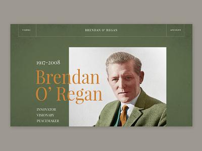 Brendan O Regan Book ireland book photoshop archive web design wordpress web design