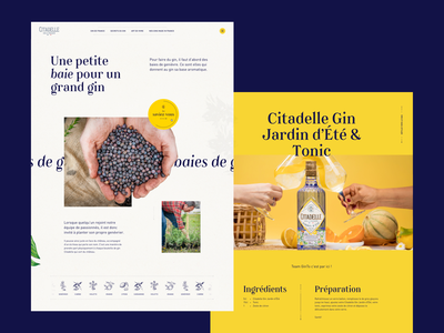 Citadelle Gin - Storytelling pages webdesign ui interaction website art direction gin alcohol layout elegant storytelling craft illustration popin scroll sun design cocktail animation smooth parallax