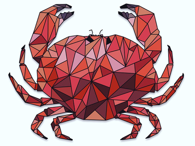 Geometric Crab procreate sea creatures art drawing ipadpro illustration