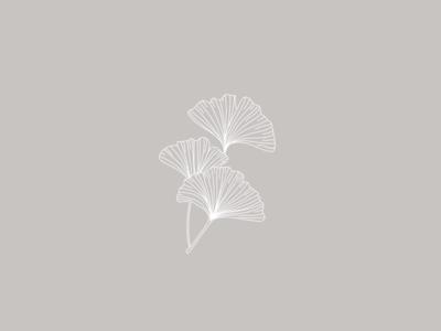 Ginkgo Leaves botanical illustration logo design visual identity illustration botanical logo brand identity branding