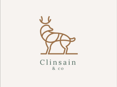 Clinsain & Co