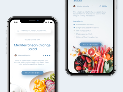 Recipe/Cooking App Concept
