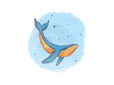 whale whales sketching animal illustration animal blue whale blue ocean fish whale