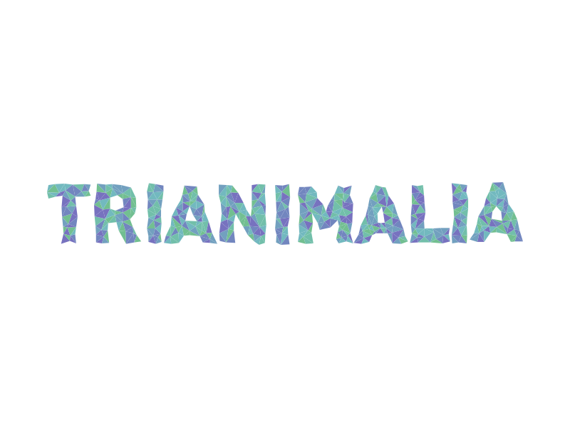 Trianimalia.com low-poly logo logotype random triangles identity animals colorful mesh triangulation