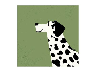 Dalmatian graphic design illustration