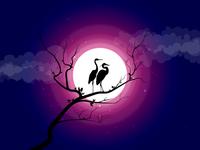 Moon Egret