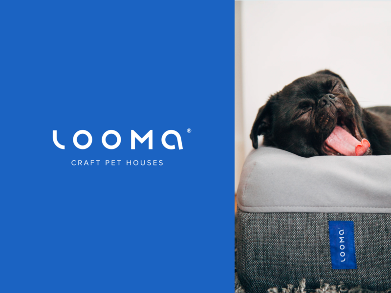 Looma - Craft Pet Houses brand identity logo design product pet modern minimal logotype custom typography blue branding logo