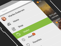 Native App, eCommerce