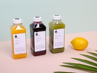 Raw Fairies - packaging and branding