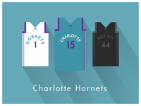 NBA Fan Art: Charlotte Hornets