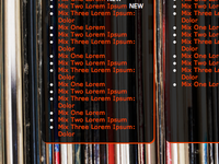 Vinylslut