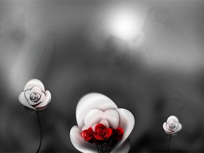Post Tenebras Lux dof roses c4d 3d ps