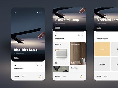 Explore Page of Shopping App design ios 12 ios app mobile user interface ui shop shopping