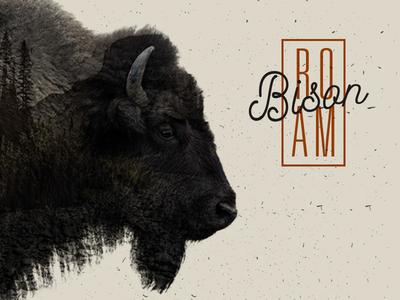 Roam Like A Bison