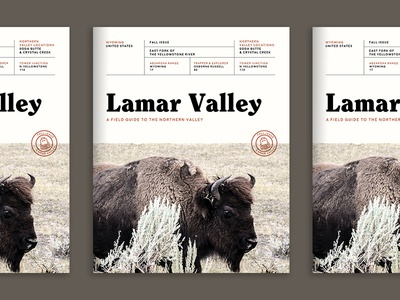 Lamar Valley - Field Guide