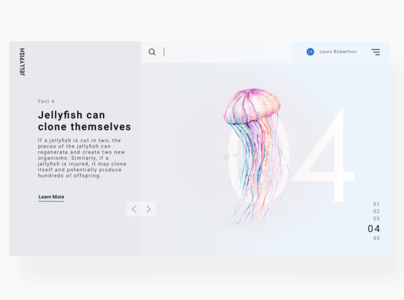 Jellyfish Information UI info website concept webpage uidesign uxdesign interaction ux ui design
