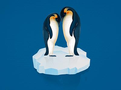 Penguin illustration procreate