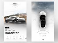 Tesla Roadster Control Center