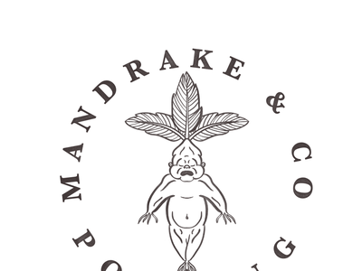 Mandrake & Potting Co Logo procreate line work blackandwhite logo mandrake harry potter