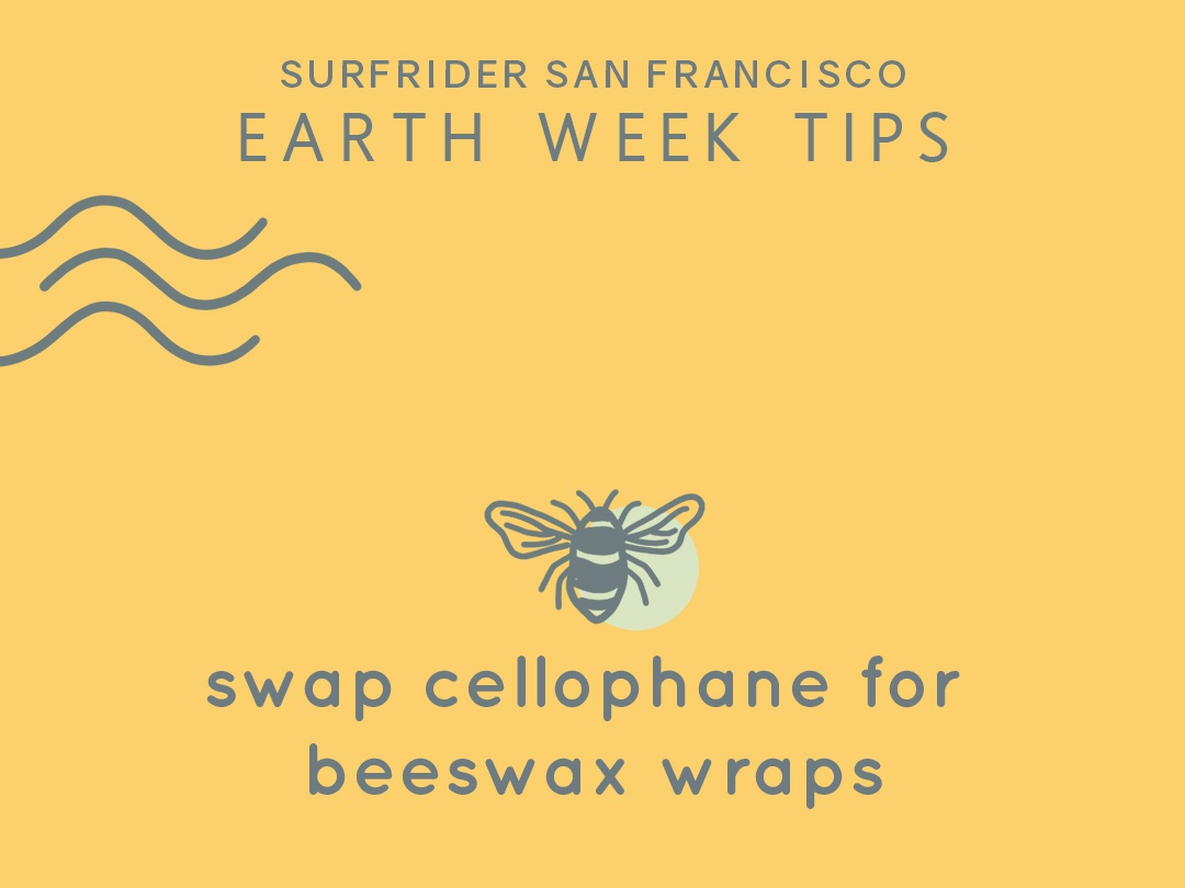 Tip #7 logotype beeswax earthday iconography bee icon illustration design