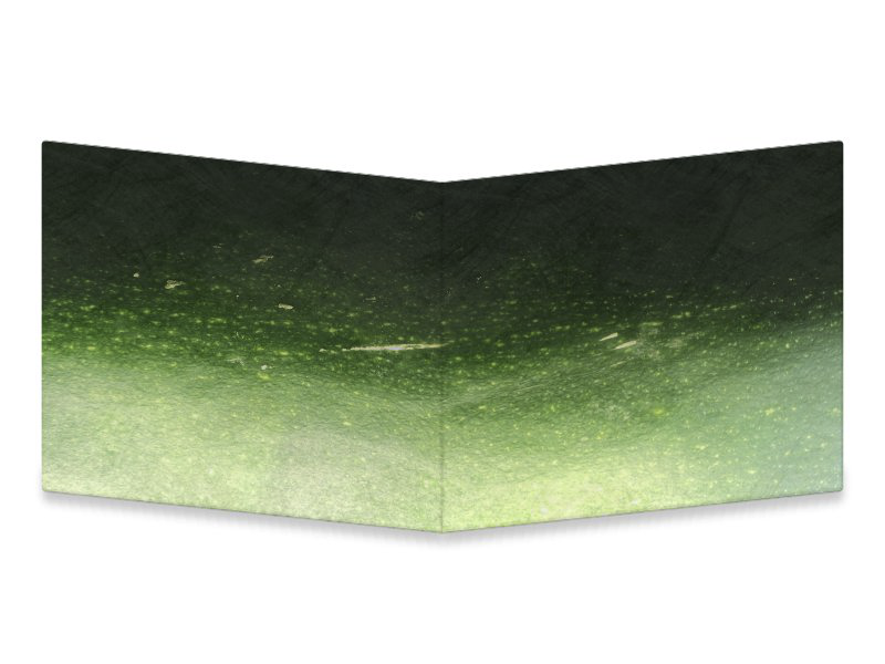 Marrow macro photograph raw mightywallet wallet gourd green vegetable zucchini courgette marrow