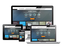 Relaunch EADS / Responsive Website