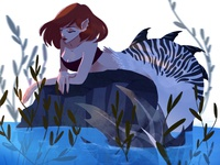 Zebra Mermaid